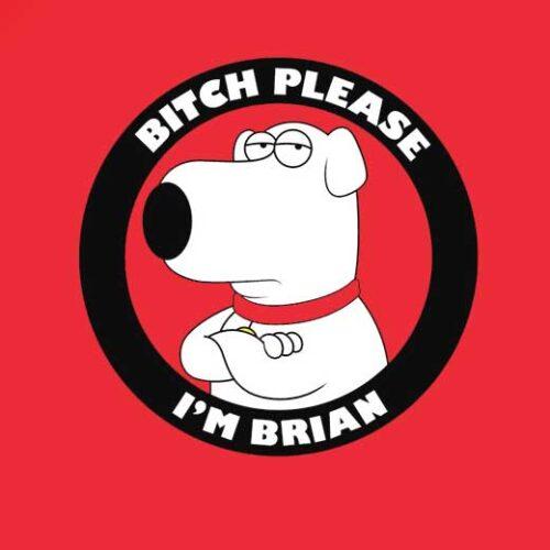 family guy comic art brian t-shirt