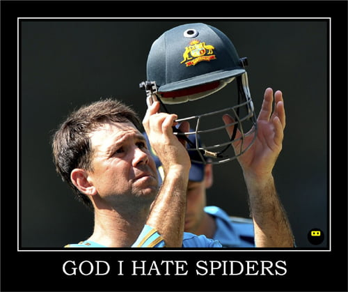 ricky ponting demotivational poster