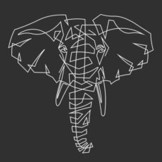 elephant illustrated wildlife africa t-shirt