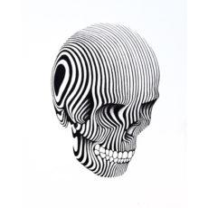 contrast skull illustrated white t-shirt