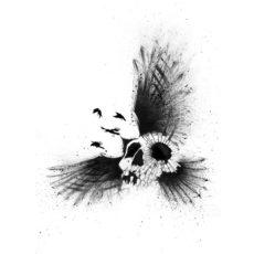 crow skull illustrated white t-shirt
