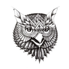 owl illustrated t-shirt design - white