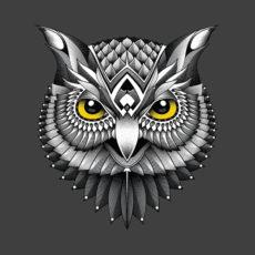 owl charcoal t-shirt
